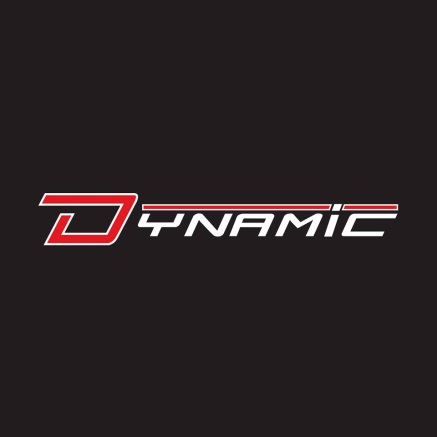 Dynamic Safety International
